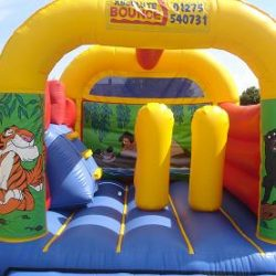 Jungle 15 x 17 Activity Slide £85 per da