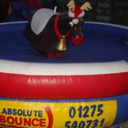 Rodeo reindeer £250 for 3 hours