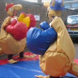 Kangaroo sumo suits £130